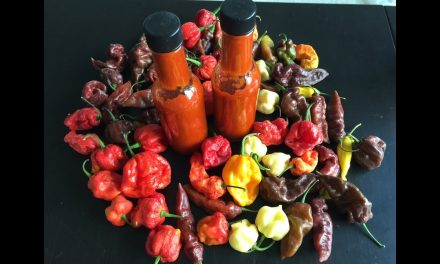Bell Peppers in Hot Sauce