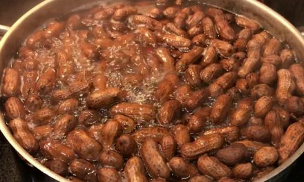 Simple Boiled Peanuts