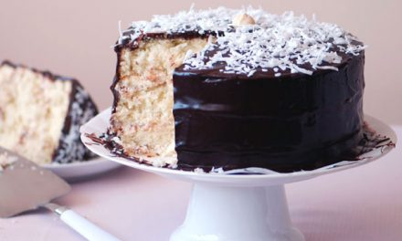 Coconut Cake with Chocolate Topping